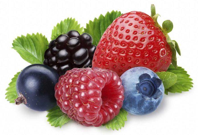 Healthy edible berries