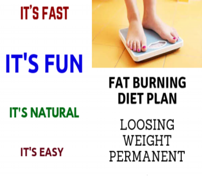 Fat Burning Diet Plan