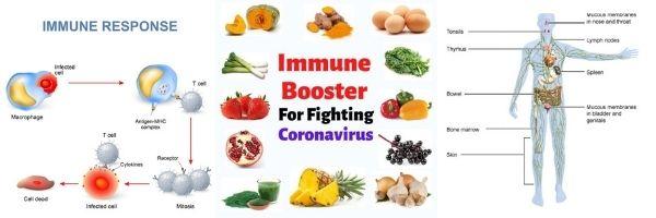 How to bolster immunity